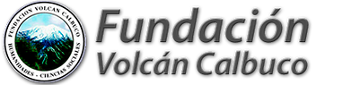 Becas Fundación Calbuco